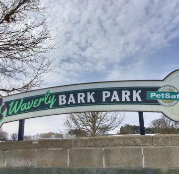 Waverly Bark Park