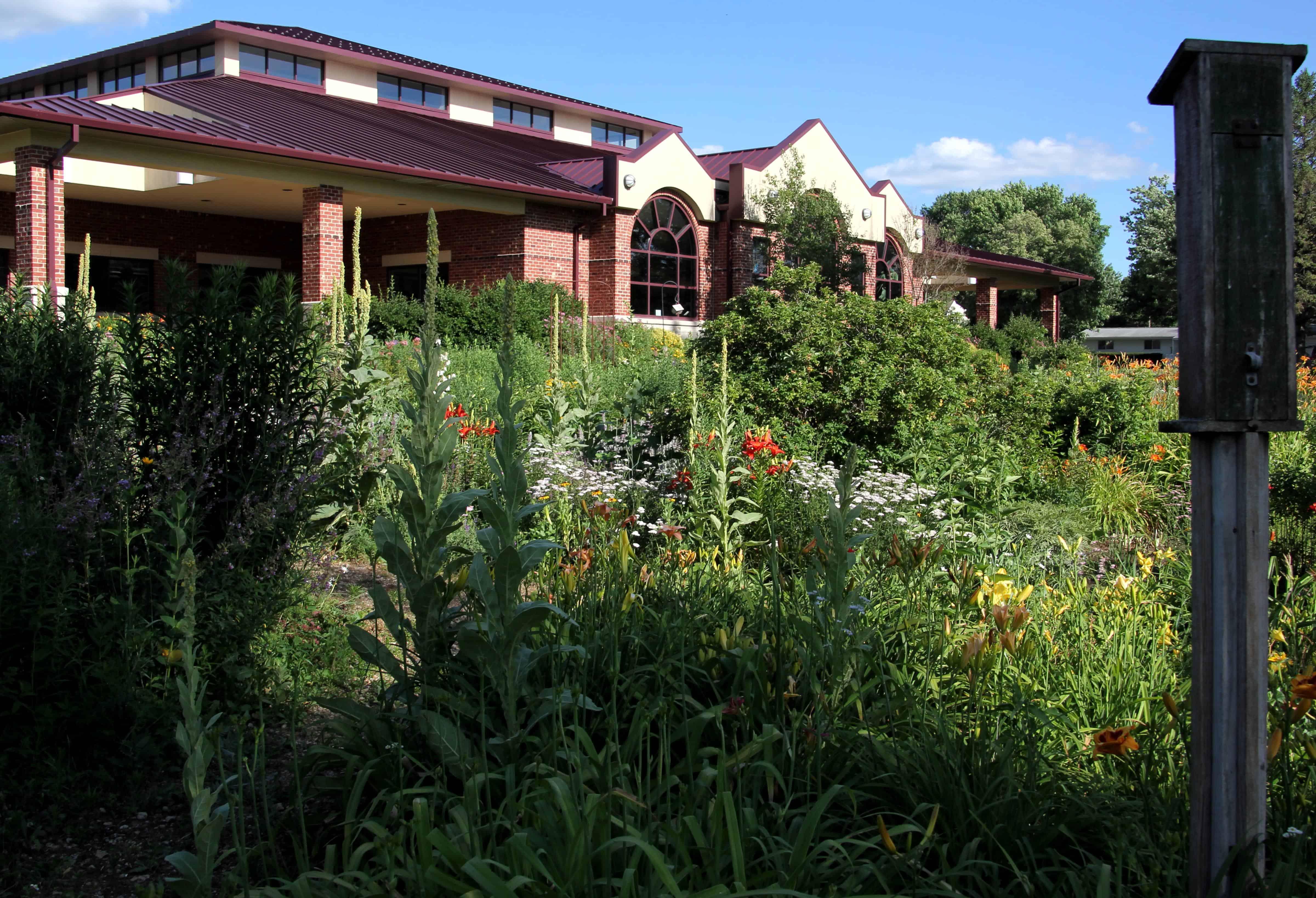 Library Building through Butterfly Garden