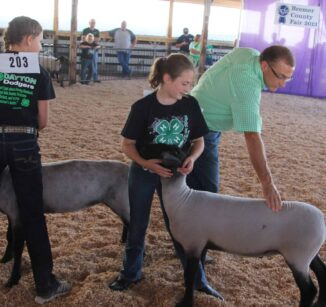 Bremer County Fair